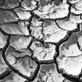 Dry Times in theCity